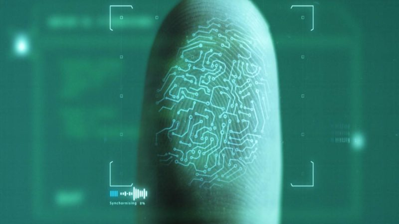 Advantages & Disadvantages Of Biometric Identification