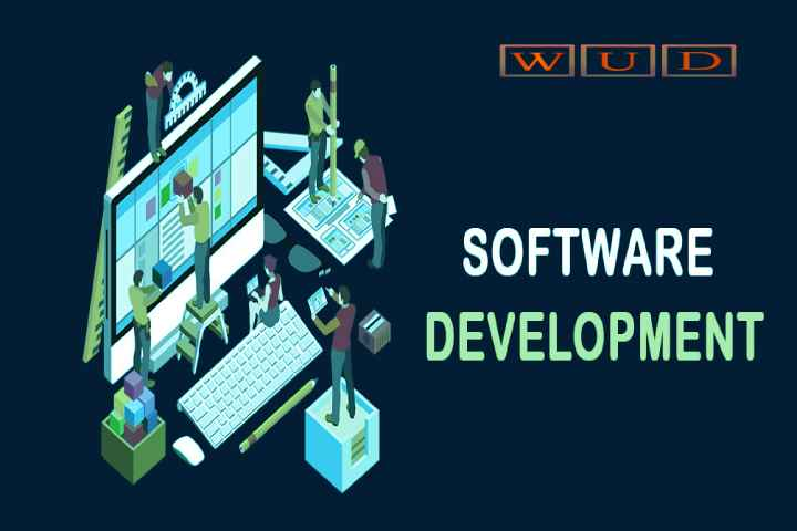 What services and benefits a Software development company delivers?