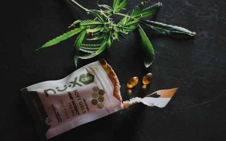 cbd capsules01