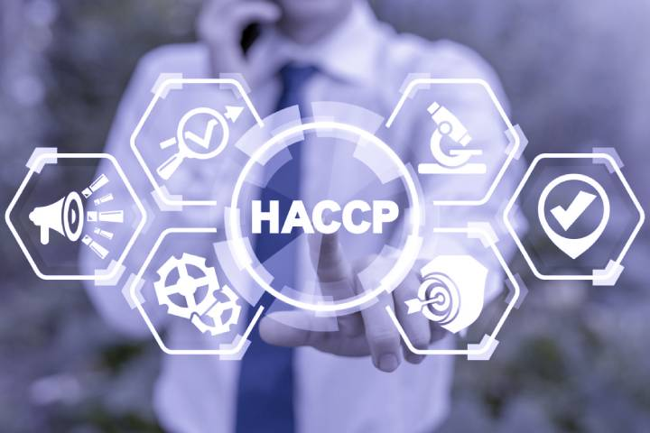 What Is a HACCP Plan? A Guide to Food Safety
